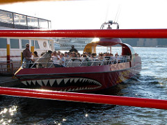 The Beast Speedboat tour New York City