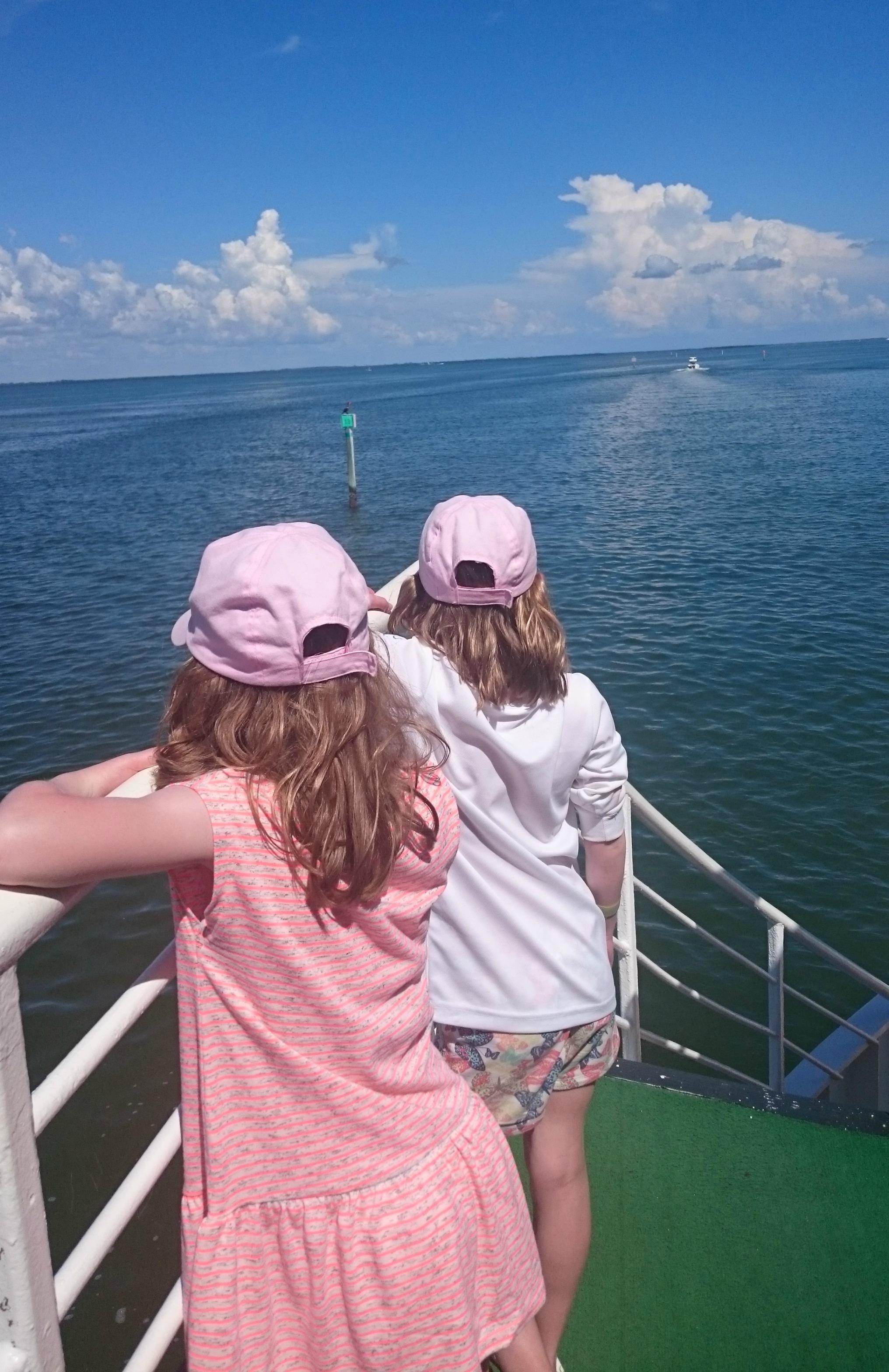 Pine Island Sound boat trip, Captiva Island, Florida